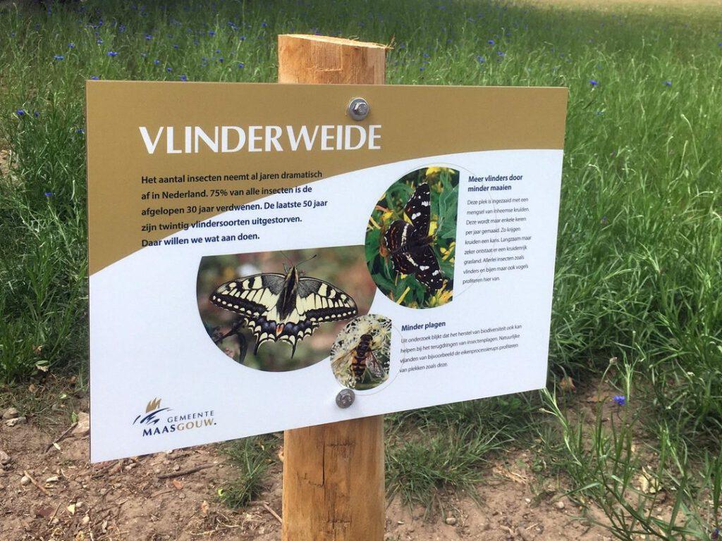 Hieël Hael: Vlinderweide