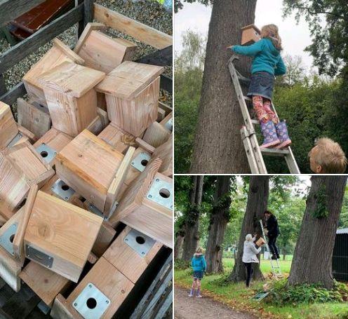 Nestkastjes voor bestrijding processierups